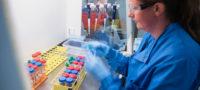 Distribuirá OMS 120 millones de pruebas rápidas de Covid-19 a 133 países de bajo y medio ingreso, incluido Latinoamérica