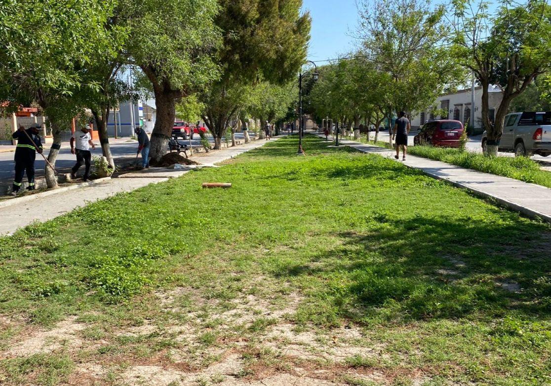 Trabaja San Buenaventura en limpieza de usos regadores en la alameda Juárez