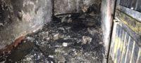 Policiaca: Mueren dos perritos calcinados tras incendio de casa, en Monclova