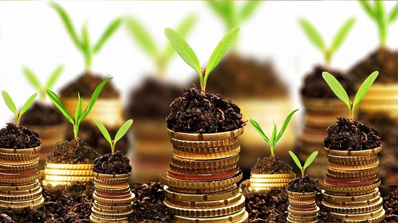 HSBC anuncia inversión de 100 MDD a proyectos contra el cambio climático